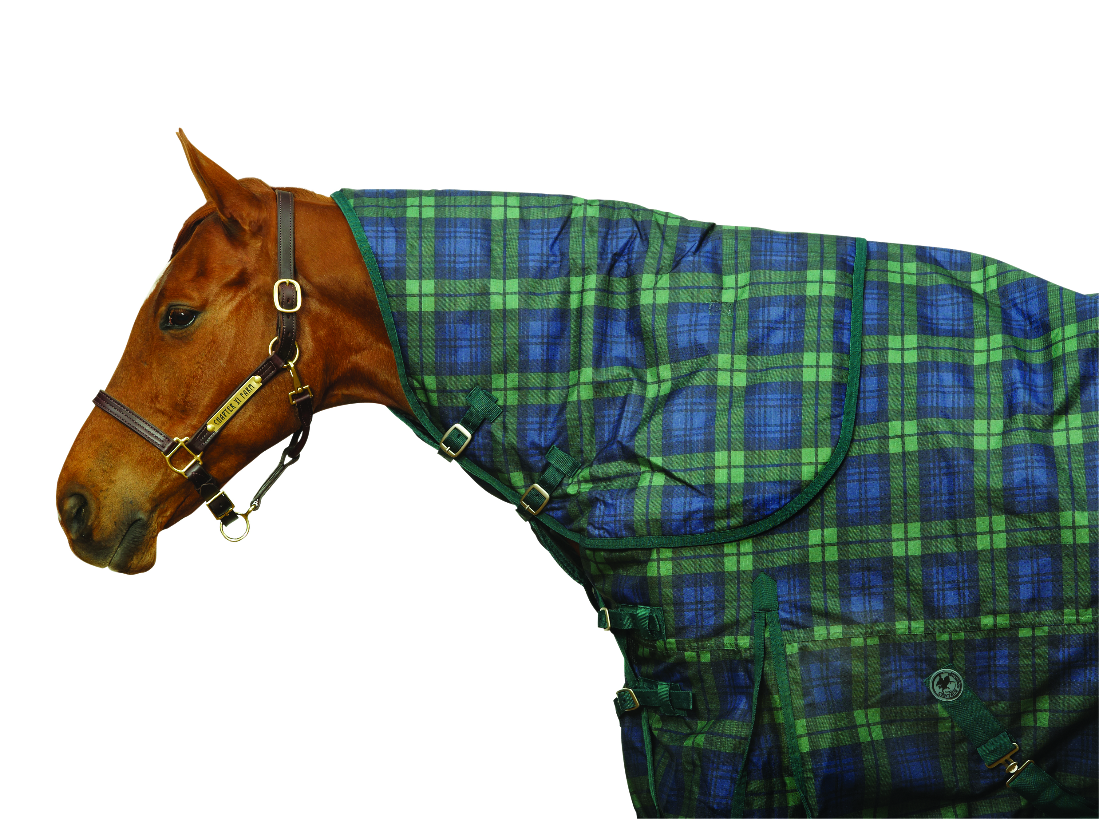 Centaur 600D Turnout Neck Rug