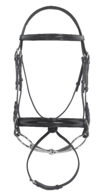 Ovation Dressage Bridle with Rubber Grip Web Reins