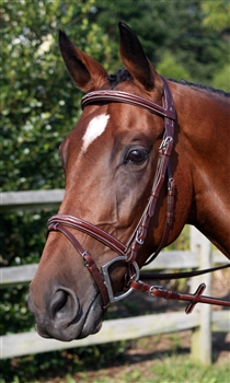 Nunn Finer Modena Event Bridle