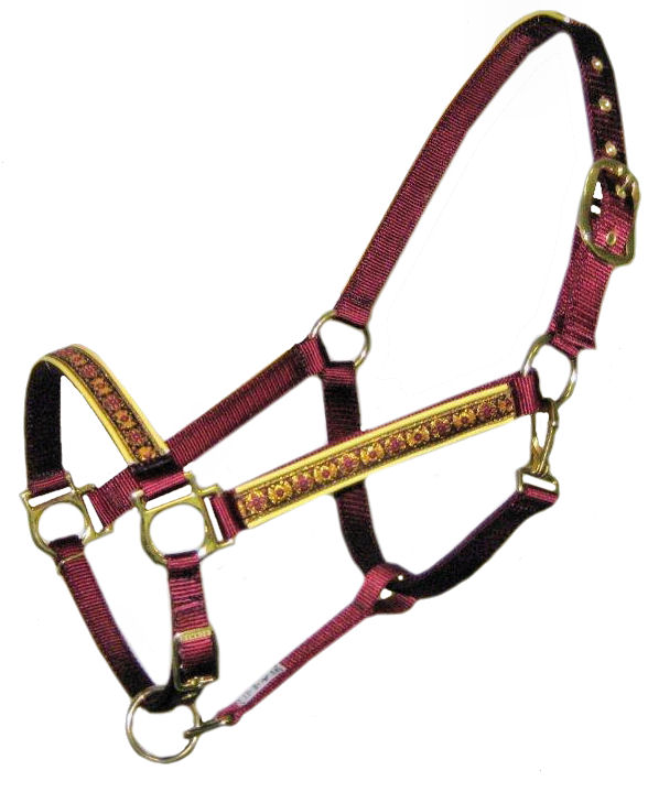 Ronmar Nylon Halter - Leather Crown/Double Buckle - India