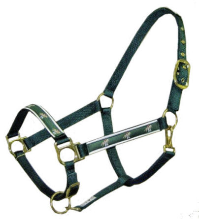 Ronmar Nylon Halter with Snap - Leather Crown/Double Buckle - Green Jumper