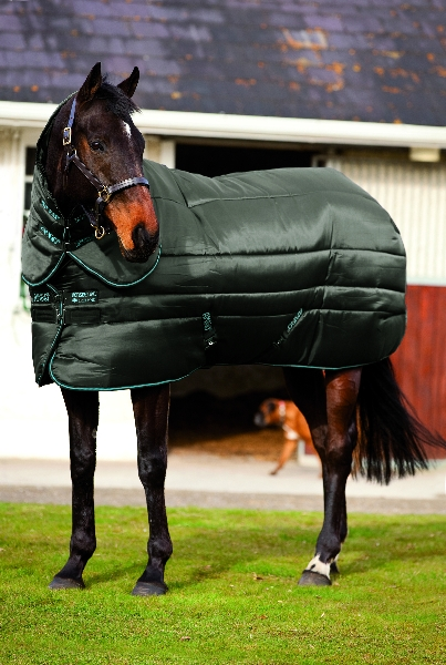 Amigo Super Insulator Stable Rug