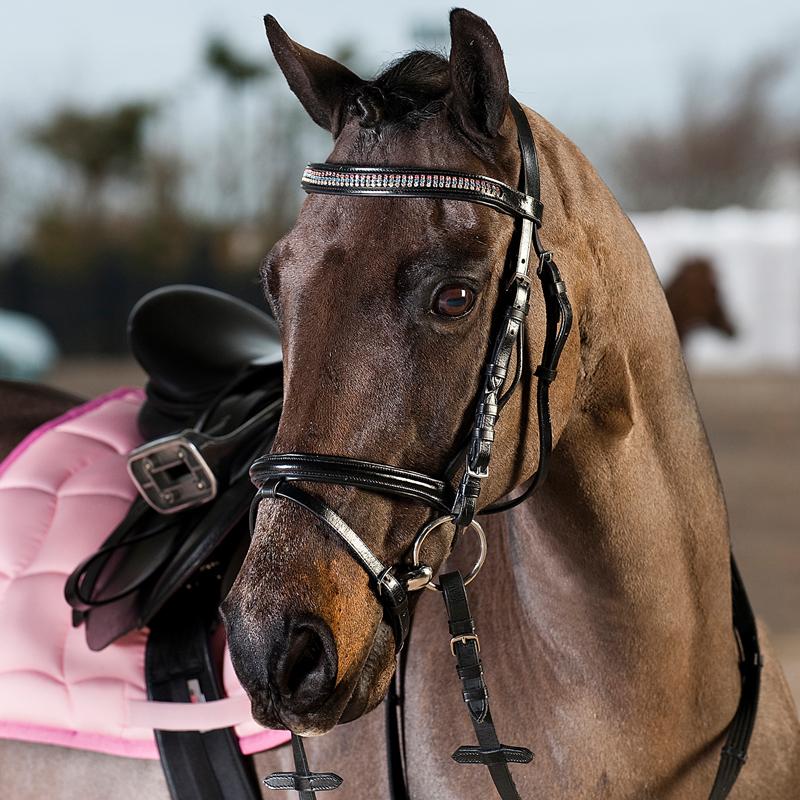 HorZe Pony Bridle HGL