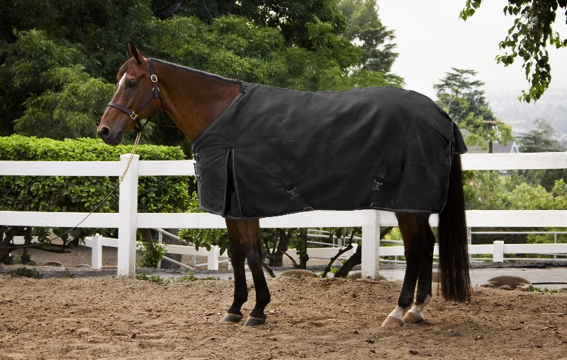 Kensington Kens-i-Tech Light Weight Turnout Rug