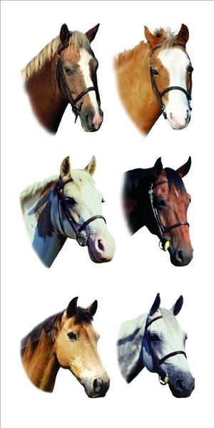 Horses 2X4 Stickers