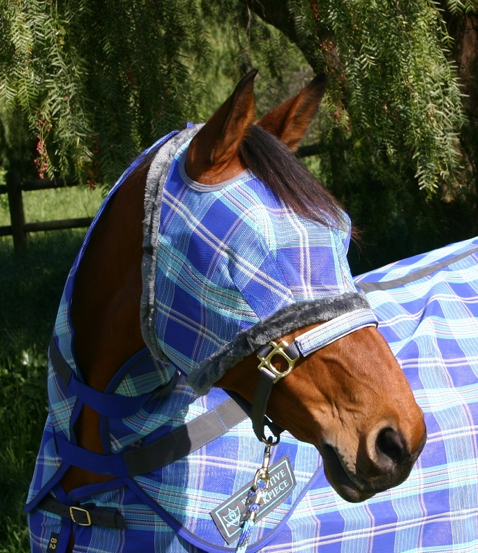 Kensington Protective Fly Mask with Fleece Trim - Draft