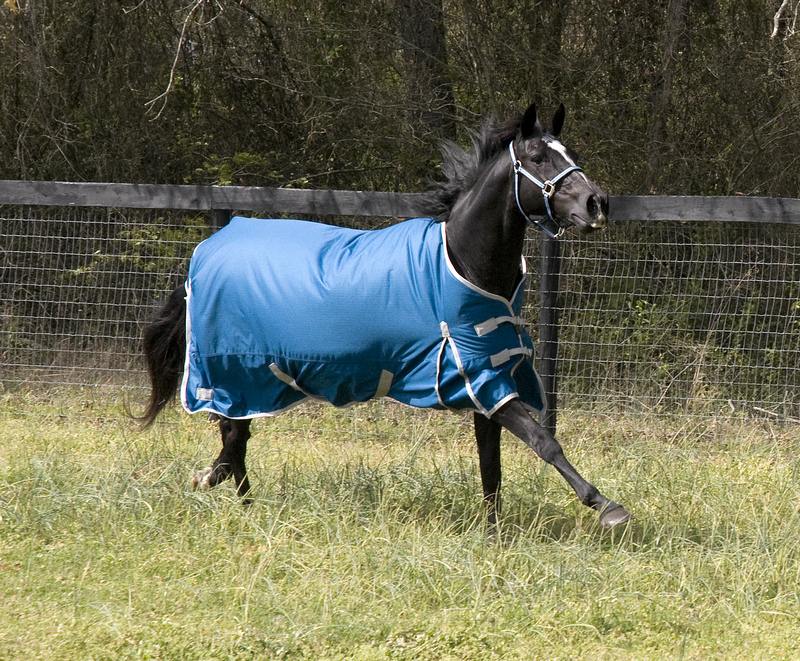 Lami-cell Lami-Cell 600D Waterproof Turnout Blanket