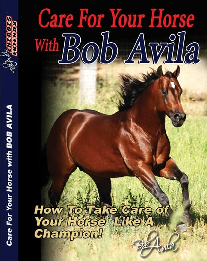 Professionals Choice Care For Your Horse DVD