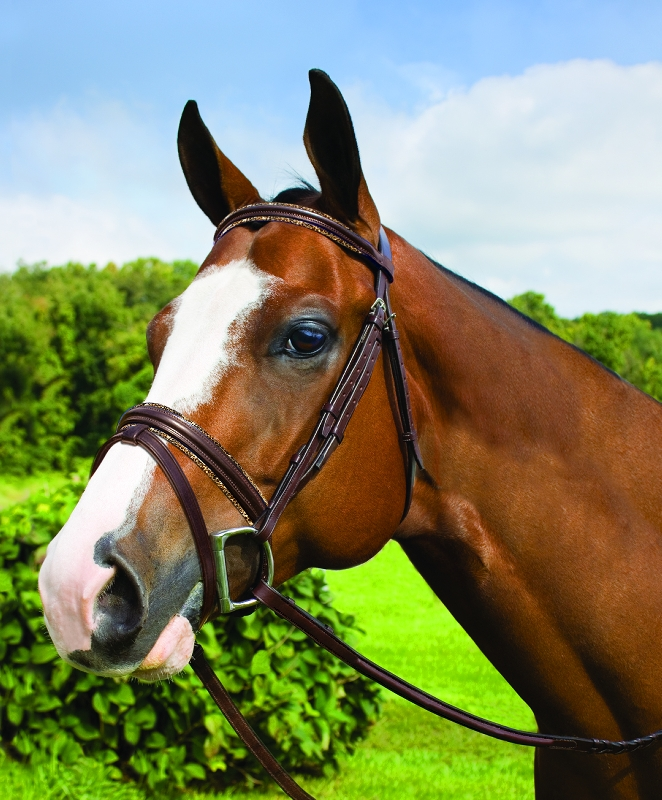 Perri's Premium Leather Padded Bridle with Removable Flash