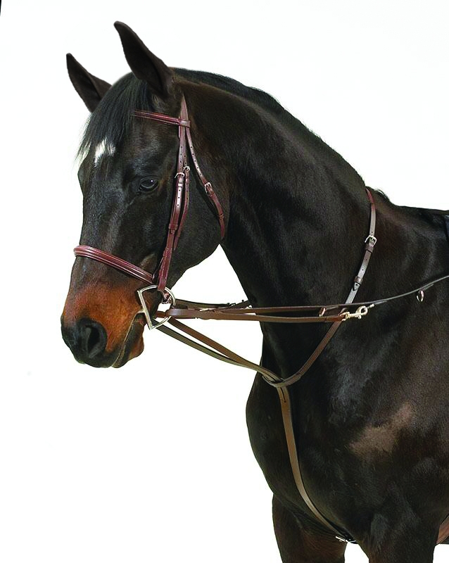 Perri's German Martingale
