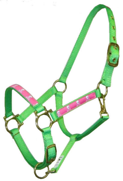 Ronmar Nylon Halter with Snap - Pink Skulls & Crossbones