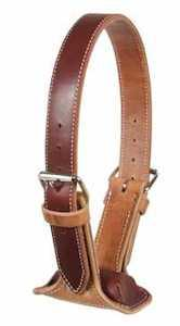 The DARE Cribbing Control Collar