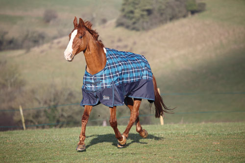 Highlander Lite Turnout Blanket