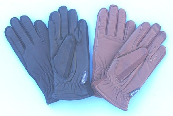 Thinsulate Lined Men's Leather Gloves