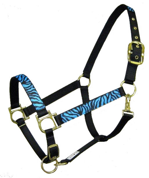 Ronmar Nylon Halter with Snap - Turquoise/Black Zebra