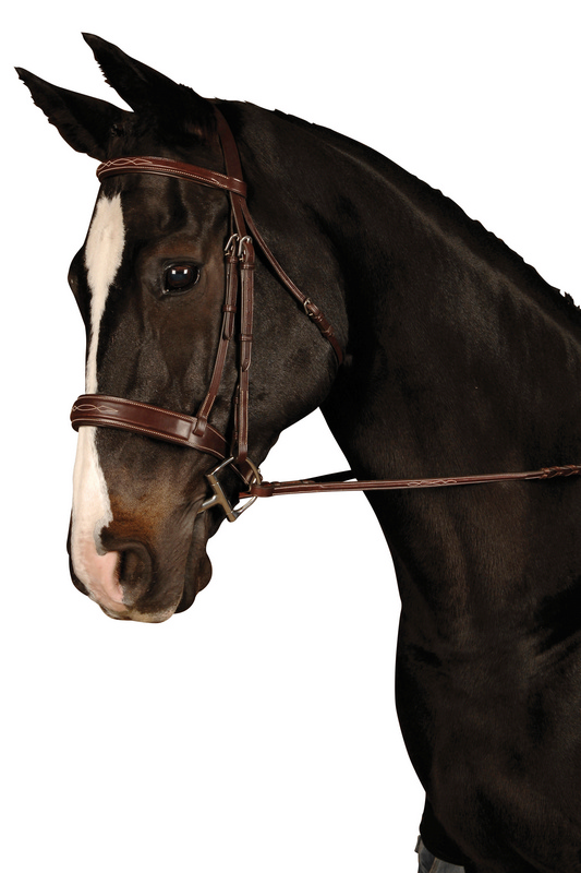Collegiate Raised Fancy Stitched Wide Noseband Bridle