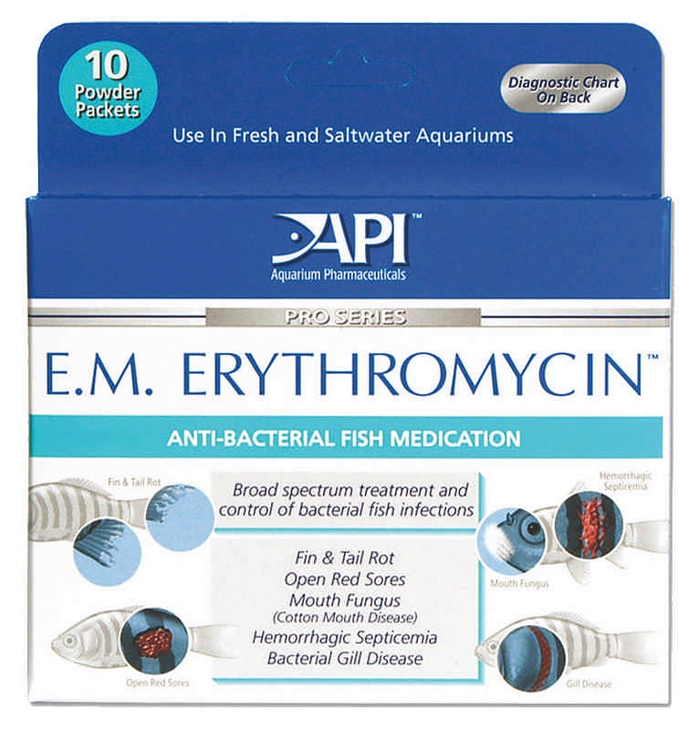 Anti bacterial erythromycin powder for fish for Erythromycin for fish
