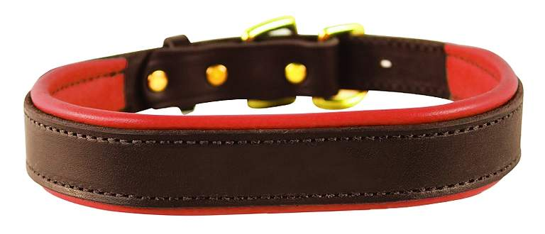 Perri's Amish Made Padded Leather Dog Collar